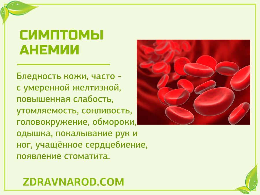 Симптомы анемии - фото