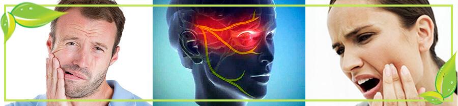 Тройничный нерв - фото