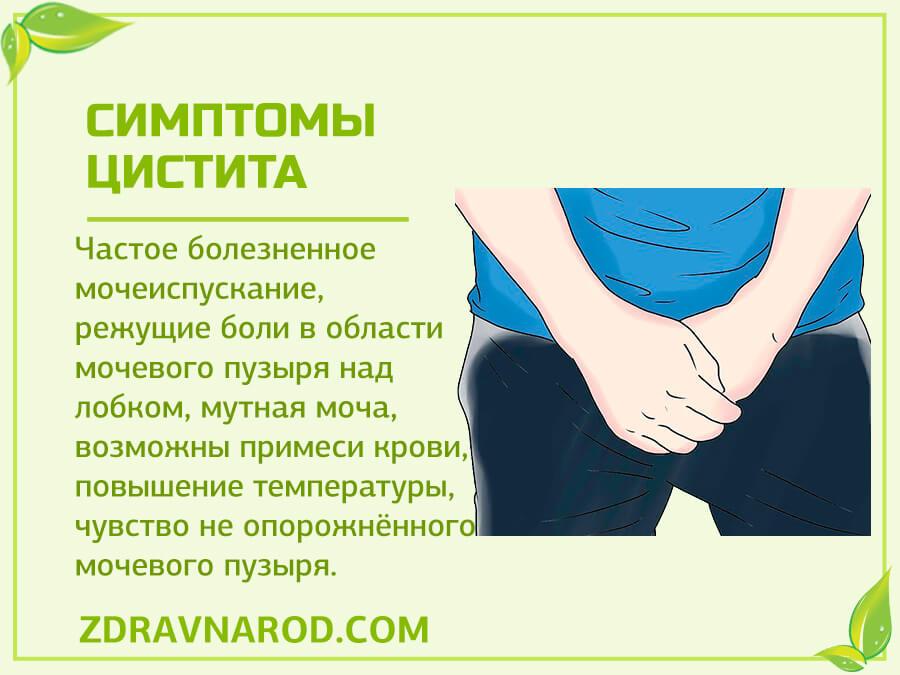 Симптомы цистита-фото